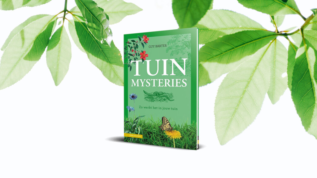 8 tuinmysteries
